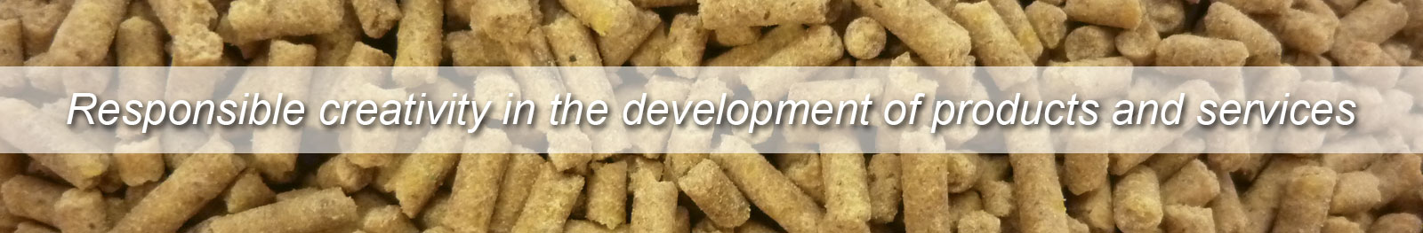 Responsible creativity in the development of products and services - Biofarma